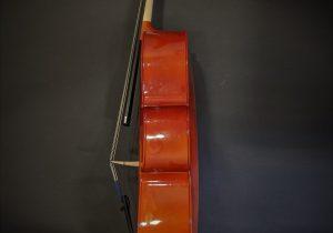 C12011